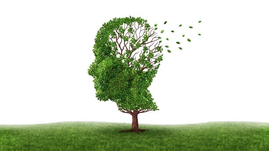 阿兹海默症的十大早期症状