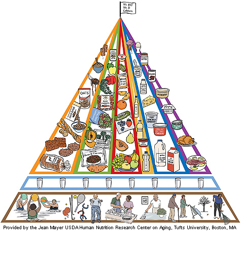 food_pyramid_older_adults